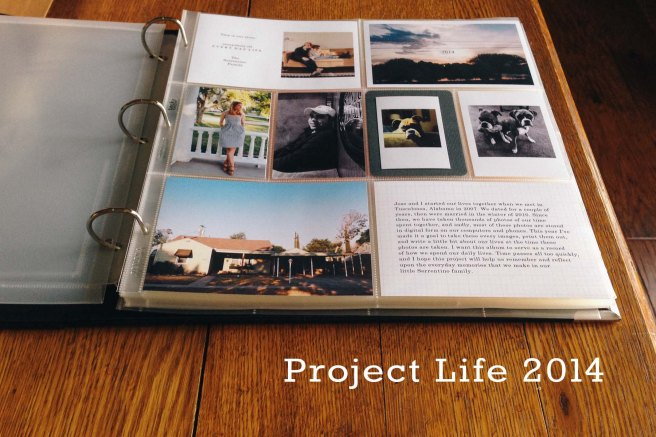 Project_Life_2014
